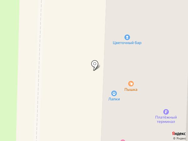 Люкс на карте Белово