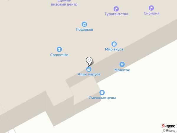 Нерта на карте Киселёвска
