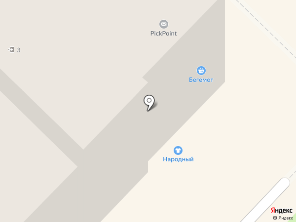 Бегемот на карте Киселёвска