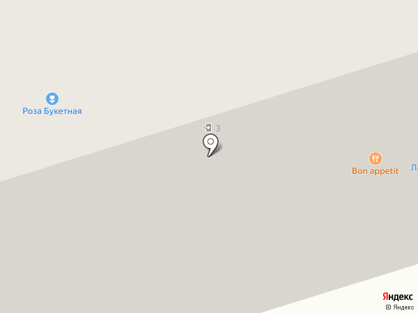 Осьминог на карте Новокузнецка