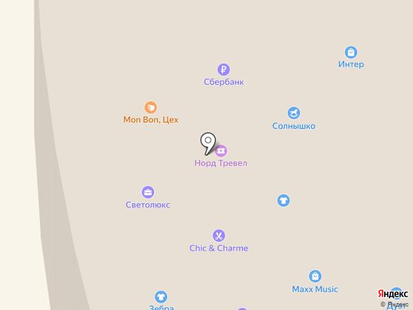 Пани сумочка на карте Норильска