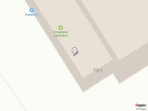 Камелия на карте Норильска