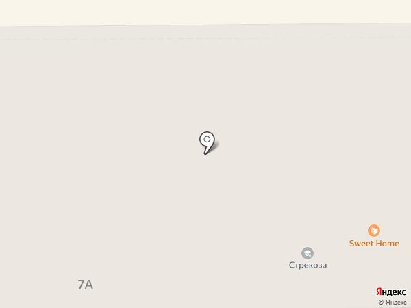 Стрекоза на карте Абакана