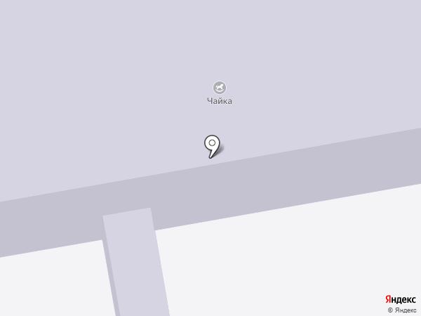 Чайка на карте Абакана
