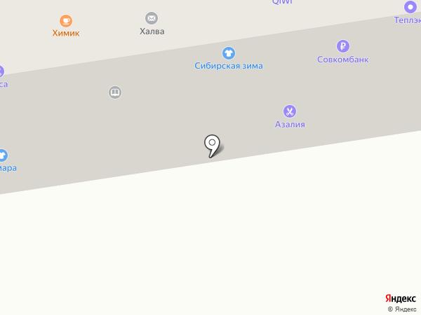 Кладовая Алтая на карте Абакана