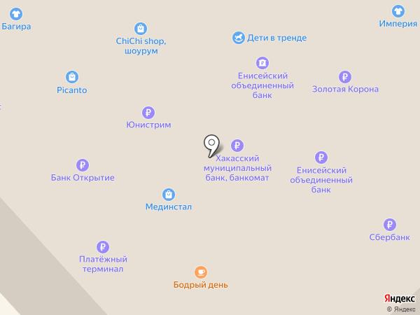 Багира на карте Минусинска