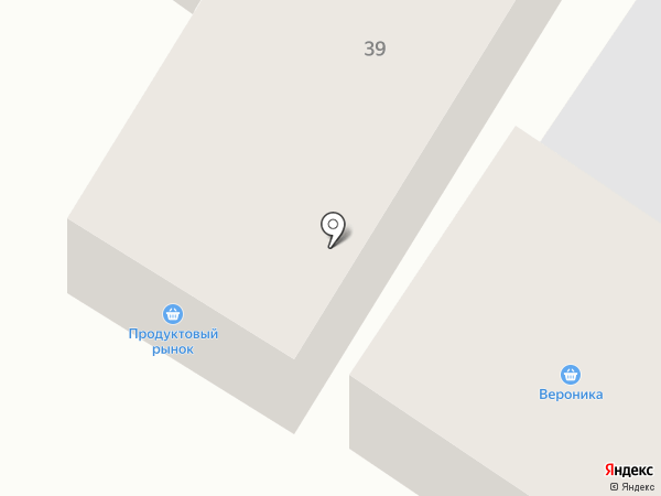 Вероника на карте Минусинска