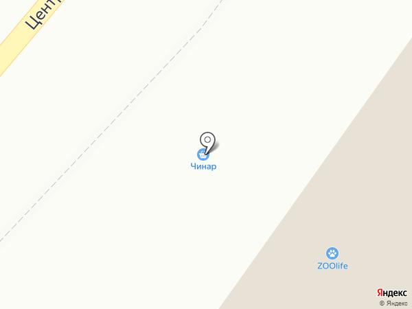 Чинар на карте Солонцов