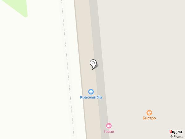 Багира на карте Красноярска