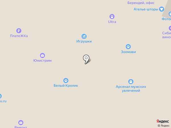 IQ-сервис на карте Красноярска