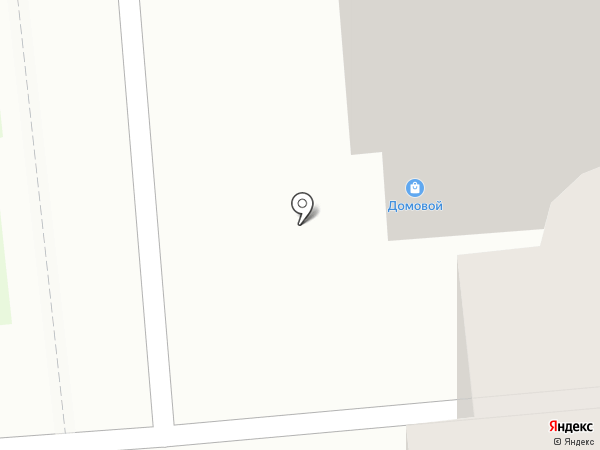 Домовой на карте Железногорска