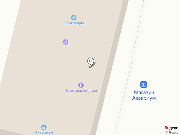 Роза Ветров на карте Железногорска