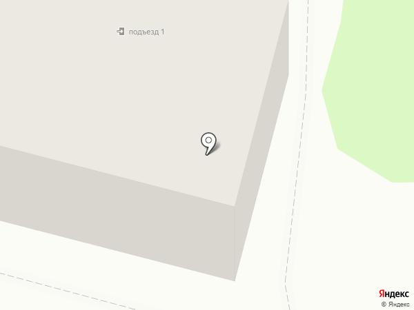 Визит на карте Железногорска