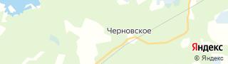 Каталог свежих вакансий города (региона) Павловск (Ленинградская область)