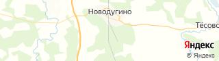 Каталог свежих вакансий города (региона) Новодугино