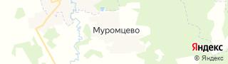 Центр занятости населения гор. Муромцево, Россия со свежими вакансиями для поиска работы и резюме для подбора кадров работодателями