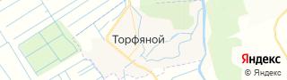 Центр занятости населения гор. Торфяной, Россия со свежими вакансиями для поиска работы и резюме для подбора кадров работодателями