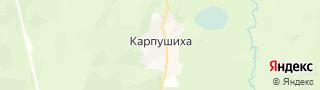 Центр занятости населения гор. Карпушиха, Россия со свежими вакансиями для поиска работы и резюме для подбора кадров работодателями