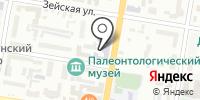 Институт геологии и природопользования ДВО РАН на карте