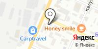 Кто там на карте