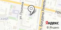 Прогимназия №51 на карте