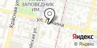 Утёнок на карте