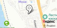 Пальма на карте