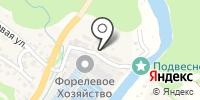 Адлер на карте