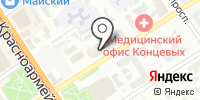 Обезьяна на карте