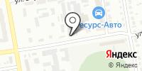 Chisto на карте