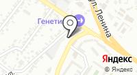 Фитчи на карте