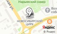 Новосибирский государственный цирк на карте