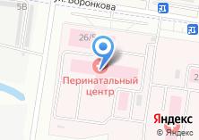 Компания «Амурский областной перинатальный центр» на карте