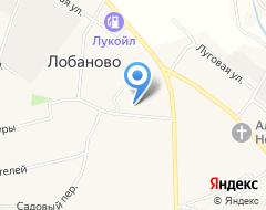 КомпанияСовет депутатов Лобановского сельского поселения на карте города