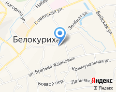 Компания Алтайский государственный университет на карте города