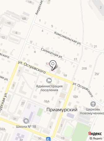 Приамурская врачебная амбулатория на карте