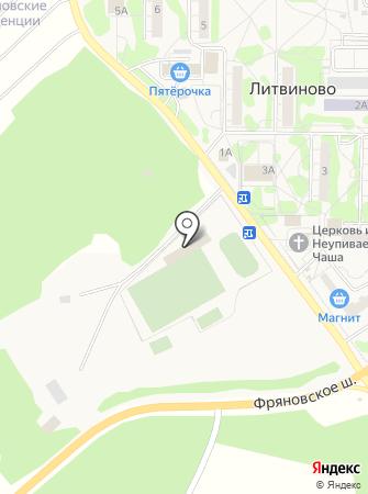 Литвиново на карте