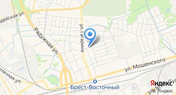 Партнер Евразийского открытого института на карте