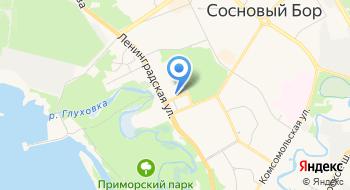 Сосновоборский художественный музей современного искусства на карте