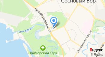 Сосновоборская Городская Научно-Информационная библиотека на карте
