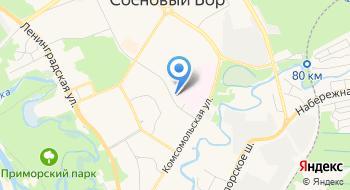 Сосновоборская Детская поликлиника на карте