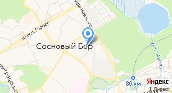 Санкт-Петербургский политехнический университет Петра Великого, филиал, Институт ядерной энергетики на карте