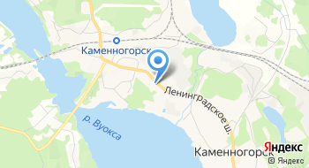 Каменногорская фабрика офсетных бумаг на карте