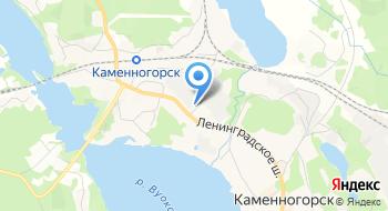 ЭсСиЭй Хайджин Продактс Раша Светогорский филиал на карте