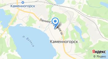 Каменногорская Детская Музыкальная школа на карте