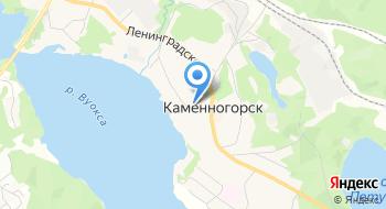 Администрация МО Каменногорское городское поселение на карте