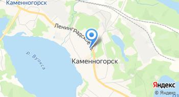 Каменногорский центр Образования на карте