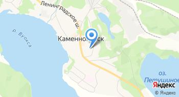Каменногорская Городская библиотека на карте
