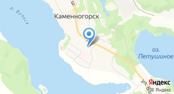 Каменногорская городская больница отделение скорой медицинской помощи на карте