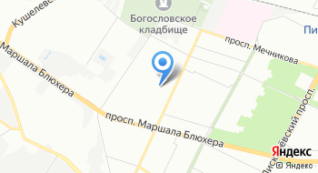 MasterGroom на карте
